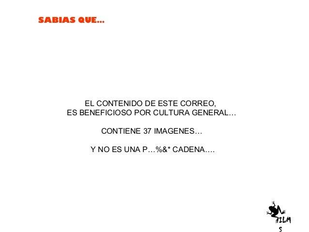SABIAS QUE…EL CONTENIDO DE ESTE CORREO,ES BENEFICIOSO POR CULTURA GENERAL…CONTIENE 37 IMAGENES…Y NO ES UNA P…%&* CADENA….ILM