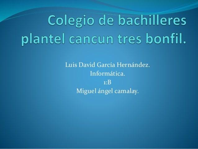 Luis David García Hernández. Informática. 1:B Miguel ángel camalay.