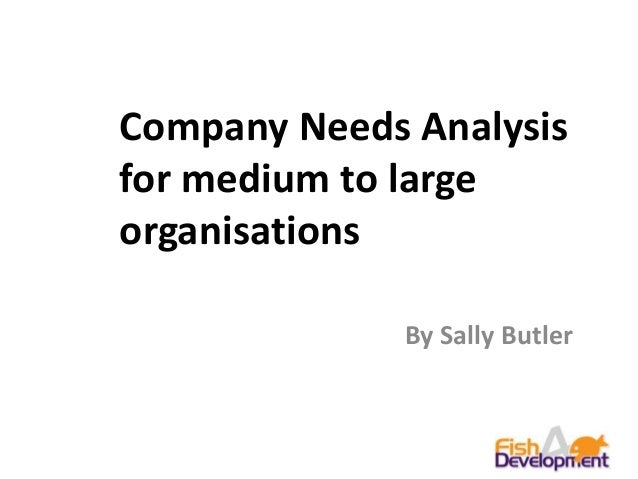 Company Needs Analysisfor medium to largeorganisationsBy Sally Butler