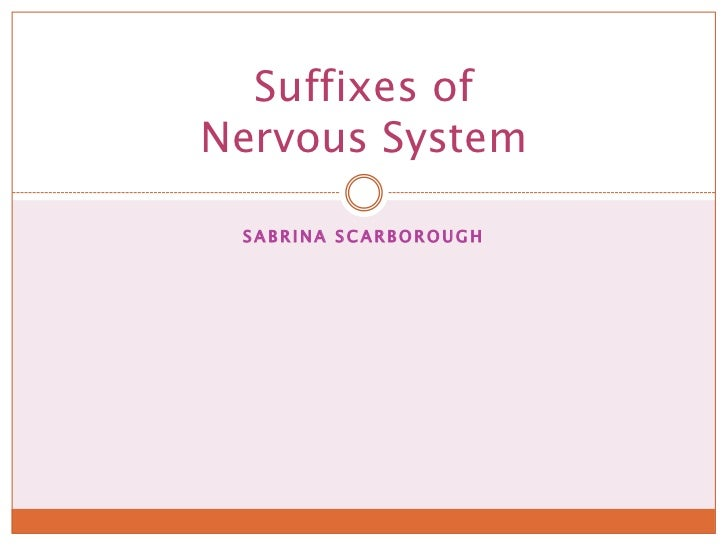 Sabrina Scarborough<br />Suffixes of Nervous System<br />