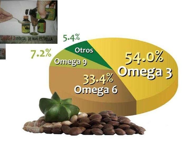 Sacha inchi en semillas• La almendra concentrada como alimento, contiene más grasa(de la  buena) que la crema de leche, má...