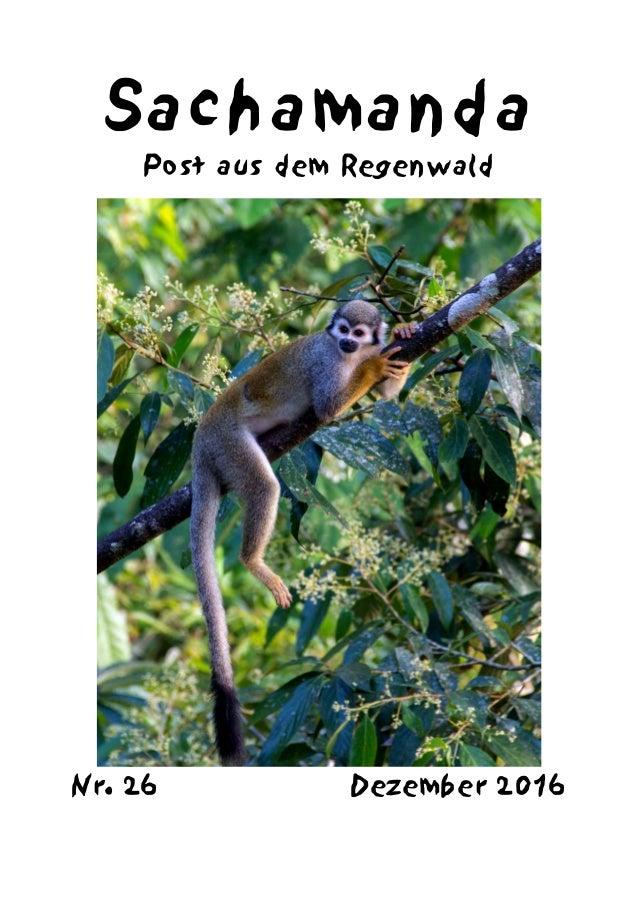 Sachamanda Post aus dem Regenwald Nr. 26 Dezember 2016