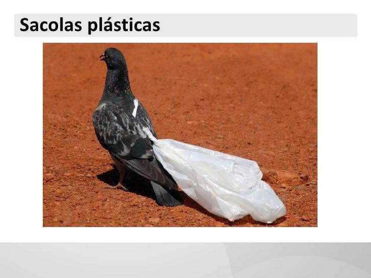 Sacolas plásticas<br />