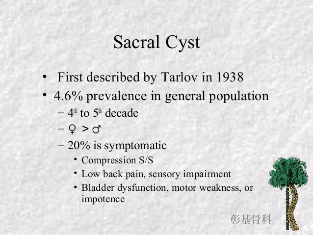 surgical treatment of symptomatic sacral cysts, Skeleton
