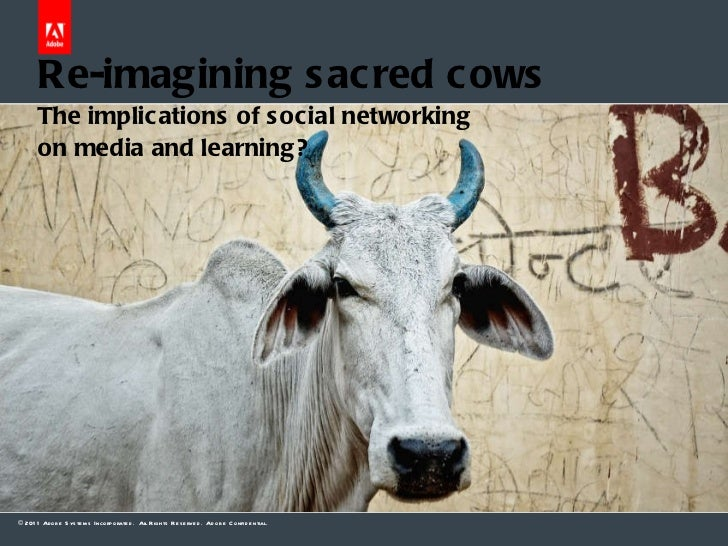 Dr Allen Partridge – Adobe eLearning Evangelist  Re-imagining sacred cows The implications of social networking  on media ...