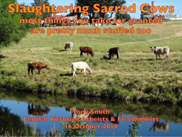 Slaughtering Sacred Cows most things you take for granted are pretty much stuffed too Tony Smith Central Victorian Atheist...