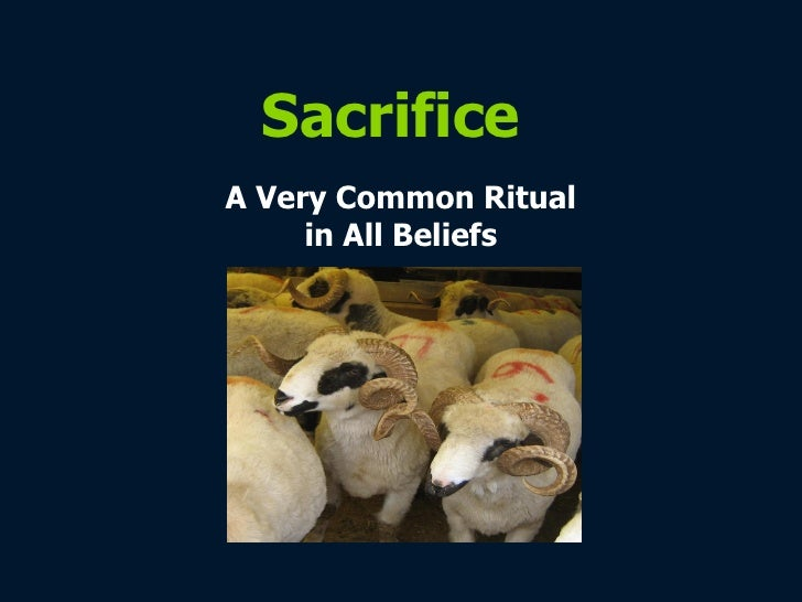Sacrifice A Very Common Ritual in All Beliefs