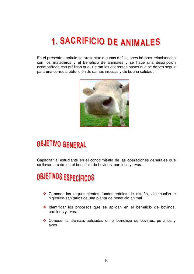 16 En el presente capítulo se presentan algunas definiciones básicas relacionadas con los mataderos y el beneficio de anim...