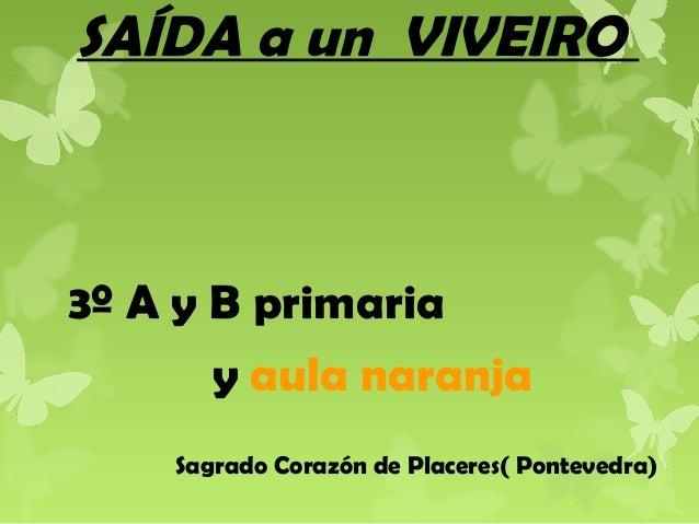 SAÍDA a un VIVEIRO  3º A y B primaria y aula naranja Sagrado Corazón de Placeres( Pontevedra)