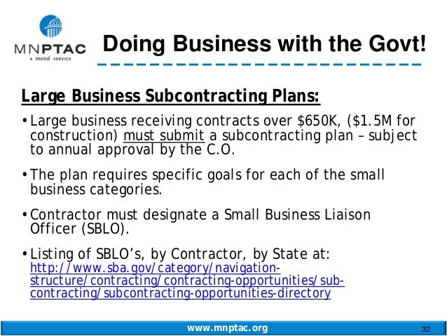 Business Plan for Government Contracts