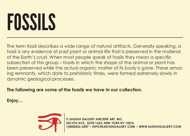 The term fossil describes a wide range of natural artifacts. Generally speaking, a fossil is any evidence of past plant or...