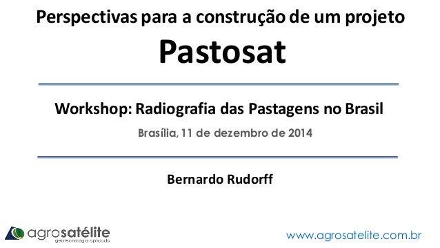 Brasília, 11 de dezembro de 2014 www.agrosatelite.com.br Perspectivas para a construção de um projeto Pastosat Bernardo Ru...