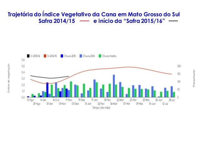 """Trajetória do Índice Vegetativo da Cana em Mato Grosso do Sul Safra 2014/15 e início da """"Safra 2015/16"""""""