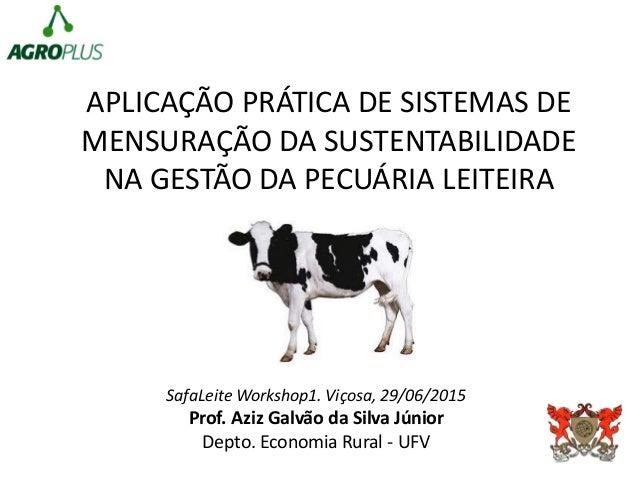 APLICAÇÃO PRÁTICA DE SISTEMAS DE MENSURAÇÃO DA SUSTENTABILIDADE NA GESTÃO DA PECUÁRIA LEITEIRA SafaLeite Workshop1. Viçosa...