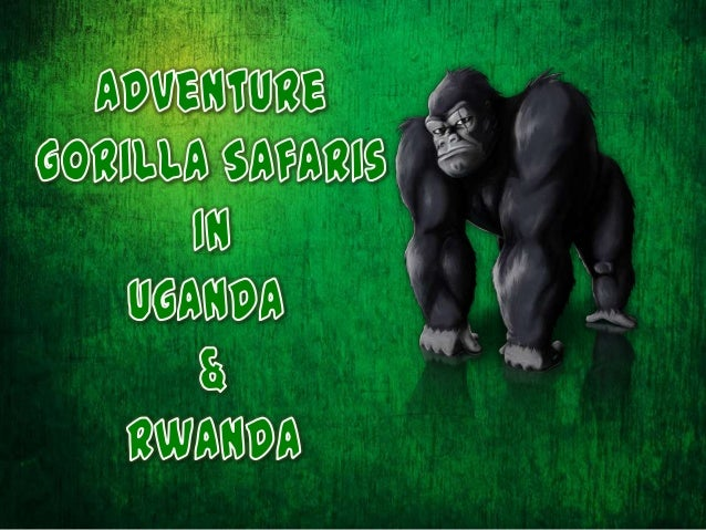 Uganda, the richest country for birds is the highesttrekking area in Africa that provides breath-takingtrekking experience...