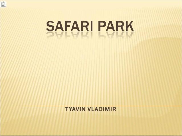 T YAVIN VLADIMIR
