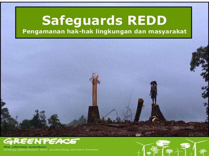 Safeguards REDD Pengamanan hak-hak lingkungan dan masyarakat