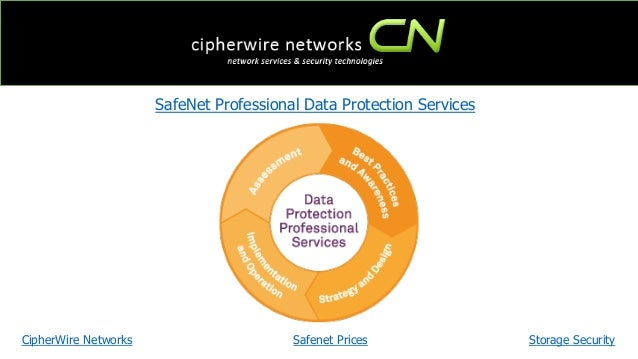 Data Protection Services : Safenet professional data protection services