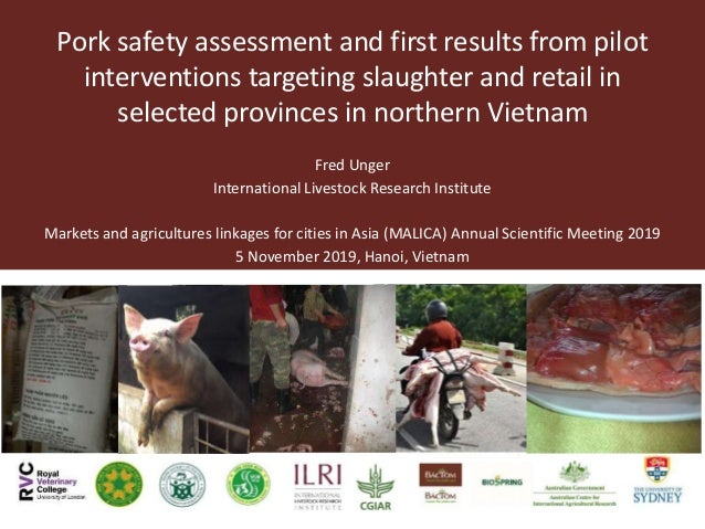 Pork safety assessment and first results from pilot interventions targeting slaughter and retail in selected provinces in ...