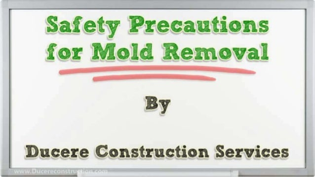 Safety precautions-for-mold-removal