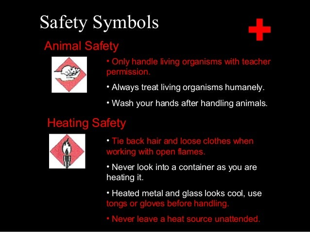 Safety Symbols For Labs In The Science Classroom