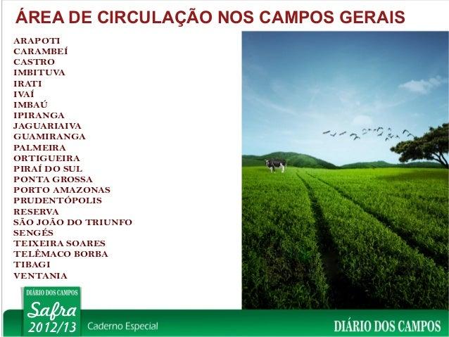 ÁREA DE CIRCULAÇÃO NOS CAMPOS GERAISARAPOTICARAMBEÍCASTROIMBITUVAIRATIIVAÍIMBAÚIPIRANGAJAGUARIAIVAGUAMIRANGAPALMEIRAORTIGU...