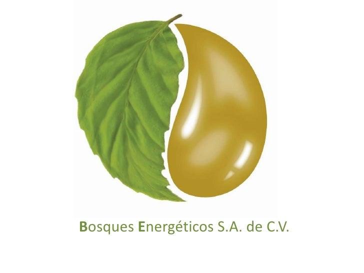 Bosques Energéticos S.A. de C.V.<br />