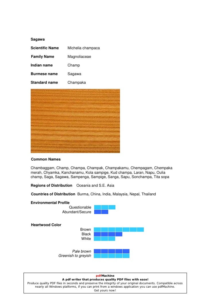 Sagawa    Scientific Name           Michelia champaca    Family Name               Magnoliaceae    Indian name            ...