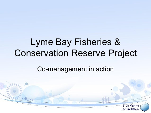 Lyme Bay Fisheries & Conservation Reserve Project Co-management in action