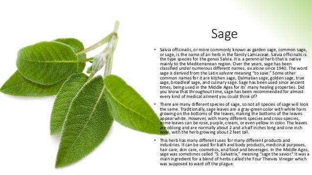 Sage class Slide 2