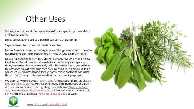 Other Uses • Since ancient times, it has been believed that sage brings immortality and eternal youth. • Dry sage has been...