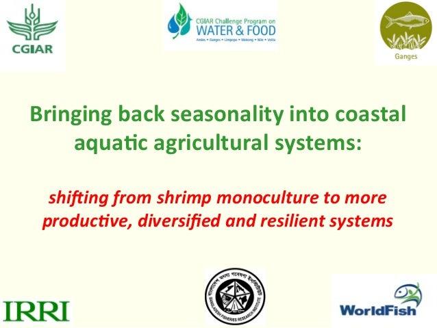 Bringing  back  seasonality  into  coastal   aqua3c  agricultural  systems:      shi$ing  from  shri...