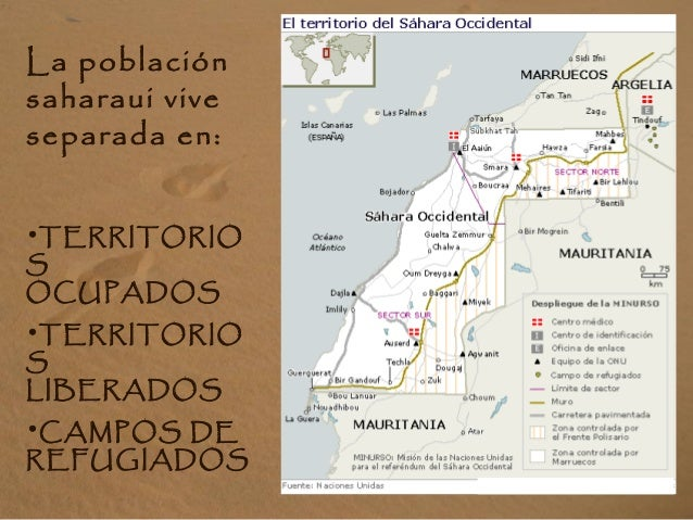 La población saharaui vive separada en: •TERRITORIO S OCUPADOS •TERRITORIO S LIBERADOS •CAMPOS DE REFUGIADOS