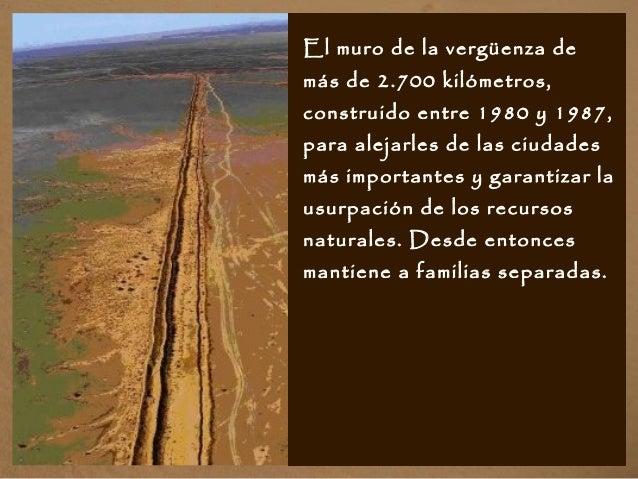 El muro de la vergüenza de más de 2.700 kilómetros, construido entre 1980 y 1987, para alejarles de las ciudades más impor...