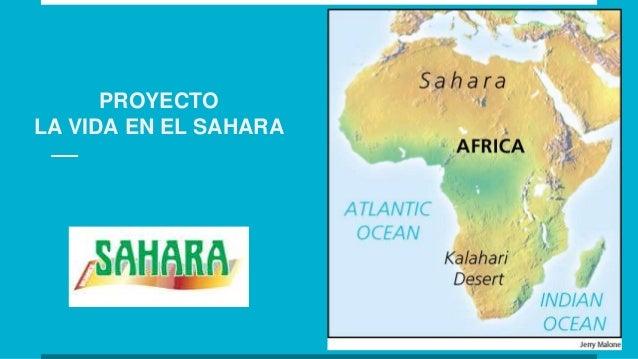 PROYECTO LA VIDA EN EL SAHARA