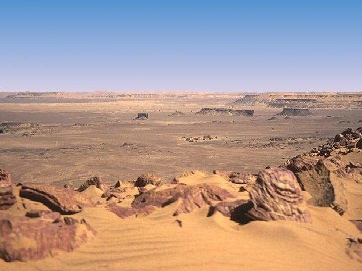 The Sahara Desert Tyler Pyle