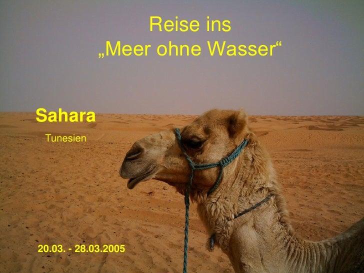 """Reise ins             """"Meer ohne Wasser""""Sahara Tunesien20.03. - 28.03.2005"""