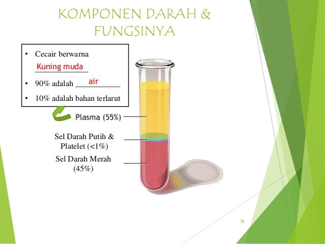 Sains Chapter 2 Ppt