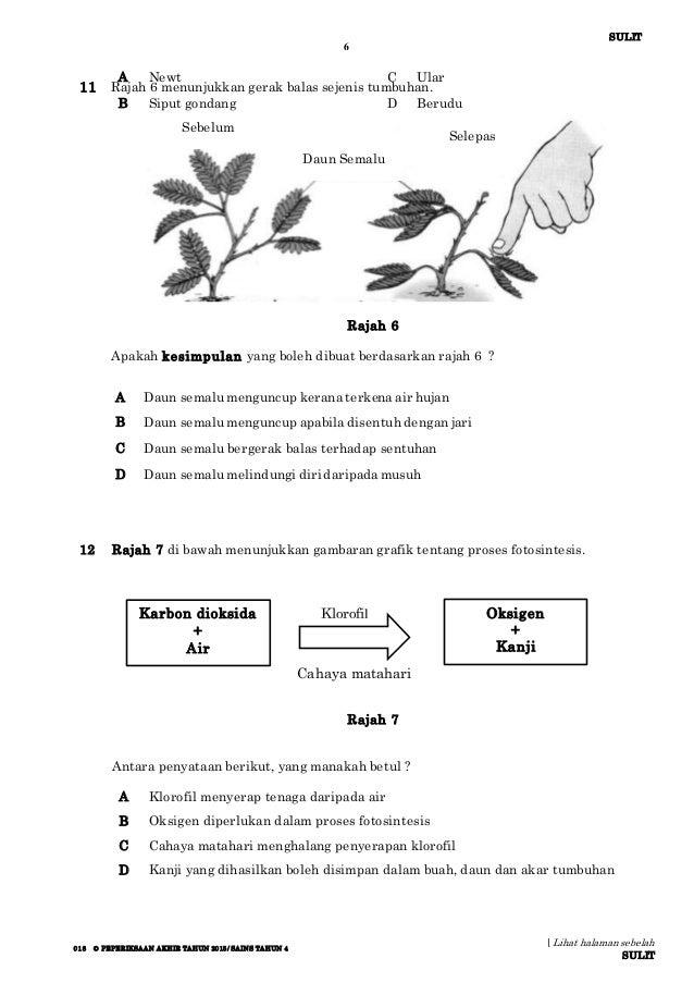 Sains Tahun 5 Paper2