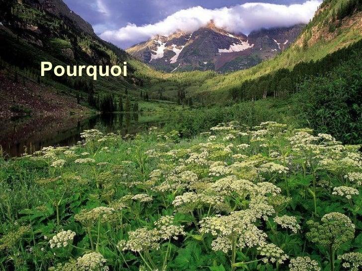 <ul>Pourquoi </ul>