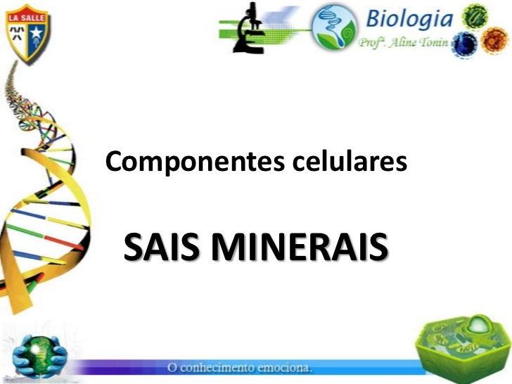 Componentes celulares SAIS MINERAIS