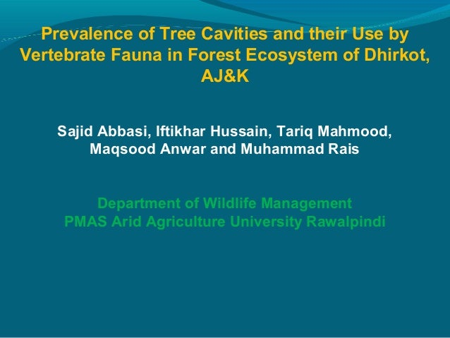 Prevalence of Tree Cavities and their Use byVertebrate Fauna in Forest Ecosystem of Dhirkot,AJ&KSajid Abbasi, Iftikhar Hus...