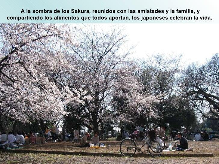 A la sombra de los Sakura, reunidos con las amistades y la familia, y compartiendo los alimentos que todos aportan, los ja...