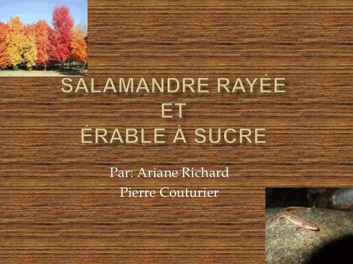 Salamandre Rayée etÉrable à sucre<br />Par: Ariane Richard<br />Pierre Couturier <br />