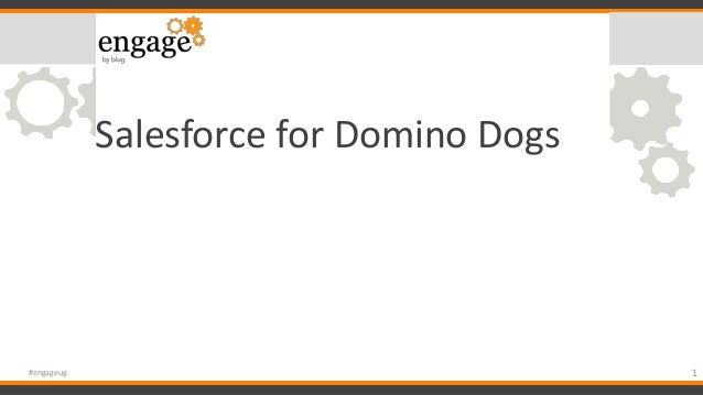 Salesforce for Domino Dogs 1#engageug