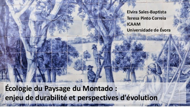 Écologie du Paysage du Montado : enjeu de durabilité et perspectives d'évolution Elvira Sales-Baptista Teresa Pinto Correi...