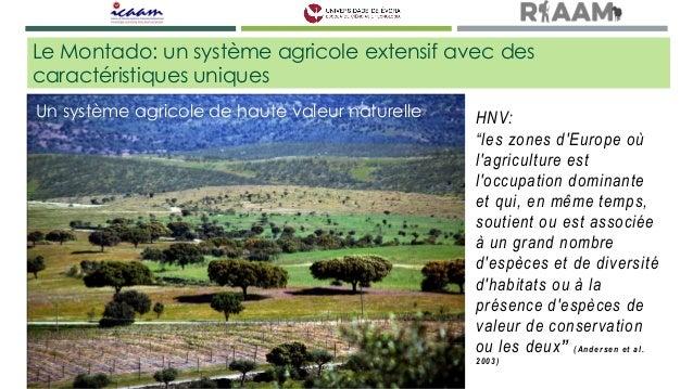 Écologie du paysage du Montado - SALES-BAPTISTA  Slide 2