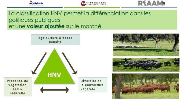 Écologie du paysage du Montado - SALES-BAPTISTA  Slide 3