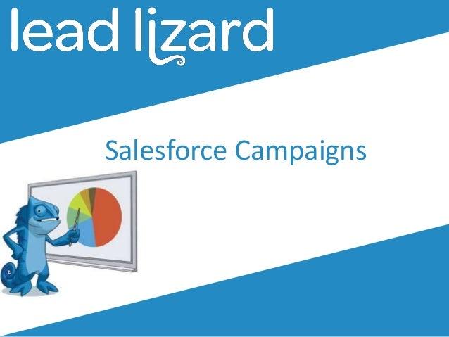 Salesforce Campaigns