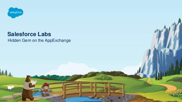 Salesforce Labs Hidden Gem on the AppExchange